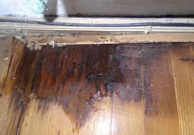 wood floor showing water damage